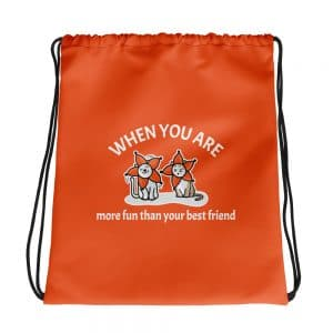 When You Are More Fun Than Your Best Friend Orange Drawstring Bag